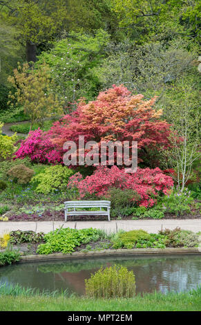 RHS Wisley gardens in May. Surrey, UK - Stock Photo