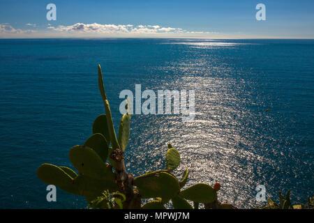 The Ligurian Sea from the Terrazza Santa Maria, Corniglia, Cinque Terre, Liguria, Italy - Stock Photo