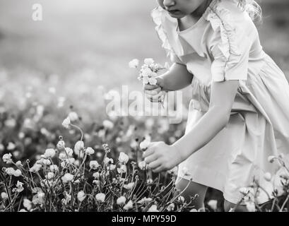 Midsection of girl picking flowers while standing on field - Stock Photo