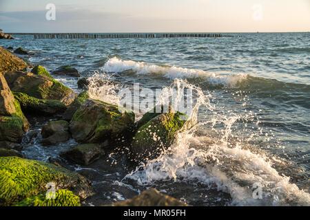 Green moss stuck on stone around sea waves. Sea waves hit the shore. - Stock Photo