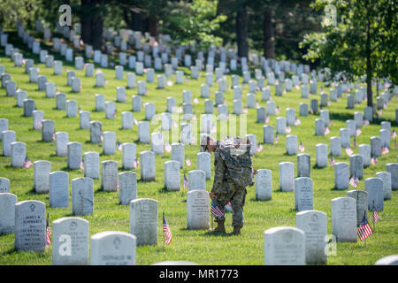Virginia, USA, 25 May 2018. A U.S. soldier from the 3d Infantry Regiment places American flags at the headstones in Section 38 during Flags In at Arlington National Cemetery to mark Memorial Day May 24, 2018 in Arlington, Virginia. In the 60-year-old tradition more than 1,000 Soldiers placed 234,537 flags in front of every headstone and Columbarium and niche wall column in the cemetery. Credit: Planetpix/Alamy Live News - Stock Photo