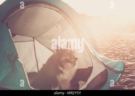 Young couple enjoy the camping. Two people and the dog as a family. Outdoor on the beach in front to the ocean - Stock Photo