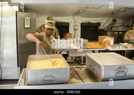 Private 1st Class Desiree Slaton, a food service specialist assigned to E Company, 6th Battalion, 101st General Support Aviation Battalion, 101st Combat Aviation Brigade, 101st Airborne Division, prepares potatoes au gratin for the field feeding portion of the Philip A. Connelly Program May 11, 2017, at Fort Campbell, Kentucky. Two warrant officers from the XVIII Airborne Corps conducted an evaluation of the 101st CAB team to determine if they would advance in the competition. - Stock Photo