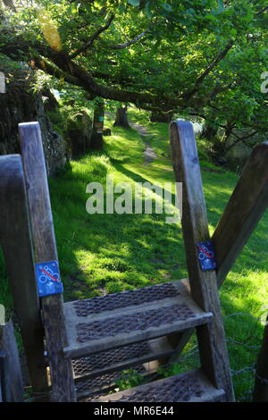 Scenic walk along the river Llugwy near the Ugly House - Stock Photo