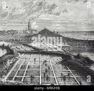 Engraving depicting the sluices and salt pans at salt works near Le Croisic, on the coast of Brittany. Dated 19th century - Stock Photo