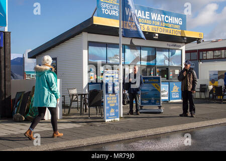 Whale watching tour operators in Reykjavik Iceland, - Stock Photo