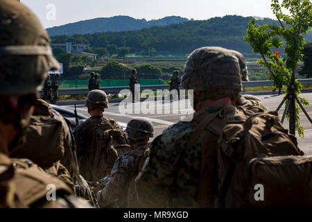 U.S. Marines and Sailors with India Company, 3rd battalion, 8th Marines, forward deployed to the 3rd Marine Division, as part of the forward Unit Deployment Program, observe Republic of Korea Marines hiking on Camp Mujuk, South Korea. May 29, 2017. This is the first time that most of the marines have ever seen Republic of Korea Marines. (U.S. Marine Corps photo by MCIPAC Combat Camera Lance Cpl. Caleb T. Maher) - Stock Photo