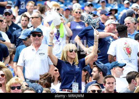 Foxborough, Mass. 26th May, 2018. A Yale Bulldogs fan cheers on the team at the NCAA Division I Lacrosse semi final between Yale and Albany, held at Gillette Stadium, in Foxborough, Mass. Eric Canha/CSM/Alamy Live News - Stock Photo