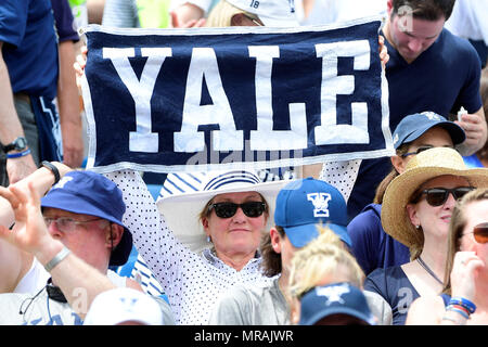 Foxborough, Mass. 26th May, 2018. A Yale Bulldogs fan holds up a banner before the start of the NCAA Division I Lacrosse semi final between Yale and Albany, held at Gillette Stadium, in Foxborough, Mass. Eric Canha/CSM/Alamy Live News - Stock Photo