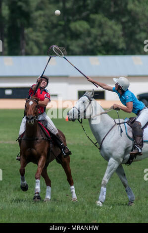 Pinehurst, North Carolina, USA. 26th May, 2018. May 26, 2018 - Pinehurst, N.C., USA - Megan Waggener, from Pulaski, Tennessee, (1), and Emma Hall, Johannesburg, South Africa, look up to control the ball during an exhibition match between the American Polocrosse Association World Cup team and visiting teams from South Africa, at the Pinehurst Harness Track, Pinehurst, N.C. The American team will be competing in the 2019 Polocrosse World Cup in Queensland, Australia, April 22-28. Credit: Timothy L. Hale/ZUMA Wire/Alamy Live News Stock Photo