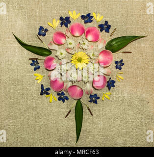 Simple fresh flower mandala on canvas fabric background. Yellow and white daisies combine with pink petals and green leaves in a symmetrical pattern. - Stock Photo