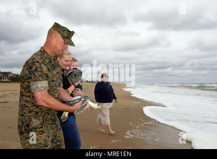 "170608-N-MS174-005 VIRGINIA BEACH, Va. (June 8, 2017) Gunnery Sgt. Paul Worley walks with his family while holding ""Purple Heart,"" a Kemp's ridley sea turtle, prior to its release back into the Atlantic Ocean after being rehabilitated from a fishing hook. Worley, attached Command Marine Corps Security Cooperation Group at Joint Expeditionary Base Little Creek-Fort Story, is a Purple Heart recipient. ""Purple Heart"" is equipped with a U.S. Navy-funded satellite tag used to track the turtle's movements and the release was conducted as part of a Navy research project with the Virginia Aquarium and - Stock Photo"