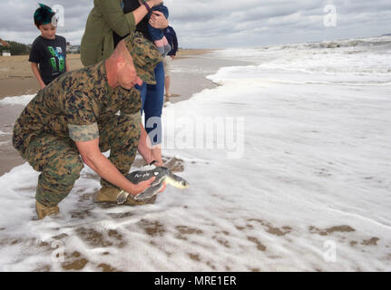 "170608-N-MS174-006 VIRGINIA BEACH, Va. (June 8, 2017) Gunnery Sgt. Paul Worley releases ""Purple Heart,"" a Kemp's ridley sea turtle, back into the Atlantic Ocean after being rehabilitated from a fishing hook. Worley, attached Command Marine Corps Security Cooperation Group at Joint Expeditionary Base Little Creek-Fort Story, is a Purple Heart recipient. ""Purple Heart"" is equipped with a U.S. Navy-funded satellite tag used to track the turtle's movements and the release was conducted as part of a Navy research project with the Virginia Aquarium and Marine Science Center. (U.S. Navy photo by Bobb - Stock Photo"