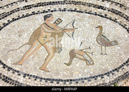 Volubilis Mosaic depicting the sixth labour of Hercules - to defeat the Stymphalian birds - Stock Photo
