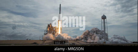 The SpaceX Falcon 9 rocket, with the Dragon spacecraft onboard, launches from pad 39A at NASA's Kennedy Space Center in Cape Canaveral, Florida, Saturday, June 3, 2017. Dragon is carrying almost 6,000 pounds of science research, crew supplies and hardware to the International Space Station in support of the Expedition 52 and 53 crew members. The unpressurized trunk of the spacecraft also will transport solar panels, tools for Earth-observation and equipment to study neutron stars. This was the 100th launch, and sixth SpaceX launch, from this pad. Previous launches include 11 Apollo flights, th - Stock Photo