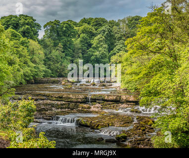 Upper Falls, Aysgarth, Wensleydale, Yorkshire Dales National Park, UK in late spring with very low water level - Stock Photo
