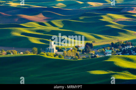 Rolling Hills and town from Steptoe Butte, Palouse - Stock Photo