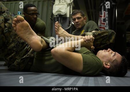 Sgt Christopher Loychik A Marine Corps Martial Arts Program