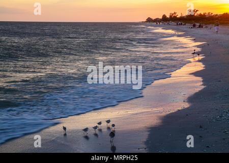 Sanibel Island Florida Gulf of Mexico sunset dusk surf water sand waves - Stock Photo