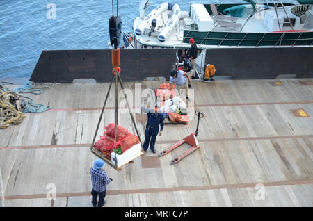 170706-N-WJ640-016 NOUMEA, New Caledonia (July 06, 2017) Civilian Mariners onboard USNS Sacagawea (T-AKE 2), onload stores and supplies off shore Noumea, New Caledonia in support of Koa Moana 17, July 6. Koa Moana 17 is designed to improve theater security, and conduct law enforcement and infantry training in the Pacific region in order to enhance interoperability with partner nations. (U.S. Navy photo by Mass Communication Specialist 3rd Class Madailein Abbott) - Stock Photo