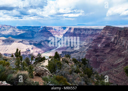 Grand Canyon, South Rim, Colorado River View, Arizona, National Park, USA, Red Rock Formations, Desert Plants - Stock Photo