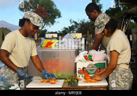 Pfc. Kericiann Thompson, Pfc. Jamson Audate, and Spc. Yulisbeth Cammarono, three culinary specialists assigned to Alpha Company, 427th Brigade Support Battalion of the New York Army National Guard, slice vegetables at Shoalwater Bay, Queensland, Australia, while preparing meals for more than 700 service members during exercise Talisman Saber, July 15. During the exercise, a series of war games, New York Army National Guard Soldiers fought against, and alongside Australian and New Zealand personnel. (U.S. Army National Guard photo by Sgt. Alexander Rector) - Stock Photo