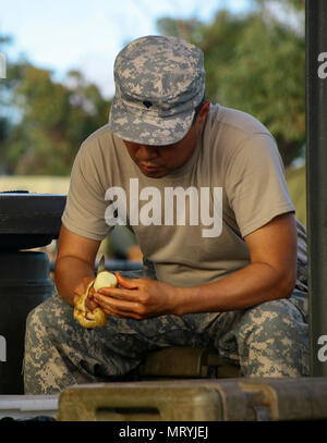 Spc. Seugwoo Yeom, a culinary specialist assigned to Alpha Company, 427th Brigade Support Battalion of the New York Army National Guard, peels a potato in a field kitchen at Shoalwater Bay, Queensland, Australia, during exercise Talisman Saber, July 15. During the exercise the culinary specialists from Alpha Company, along with their Australian counterpart, were tasked with providing daily meals for over 700 service members. (U.S. Army National Guard photo by Sgt. Alexander Rector) - Stock Photo