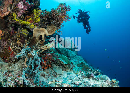 An underwater photographer swims over a sloping reef in search of photo opportunities. - Stock Photo