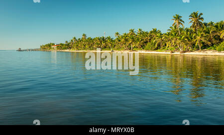 Tropical Caribbean beach destination of Ambergris Caye in Belize - Stock Photo