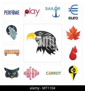 Set Of 13 simple editable icons such as eagle head, , carrot, beat, blood drop, maple leaf, wolf can be used for mobile, web UI - Stock Photo