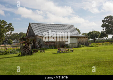 Old Farm House Florida USA - Stock Photo