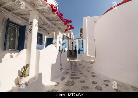 MYKONOS, GREECE - MAY 2018: View over the old street in Mykonos town district Little Venice with stony pavement, traditional houses and bush in blosso - Stock Photo