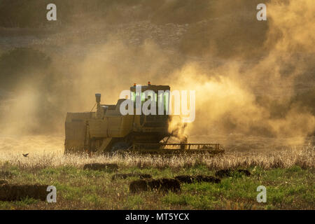 A New holland combine harvester working in a field near Rizokapaza, Northern Cyprus - Stock Photo