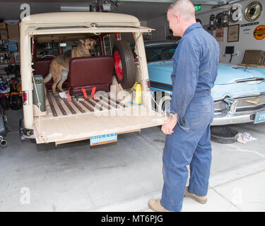 Lieutenant Colonel Timothy Silkowski, director of Fleet Support Division restores antique and vintage vehicles in his down time, including this 1956 DeSoto and 1950 Jeep Willys Station Wagon, aboard Marine Corps Logistics Base Barstow, Calif., July 25. His canine companion, Harley approves of the new seat he found in a wreckage and restored to fit in the back of the Willys. - Stock Photo