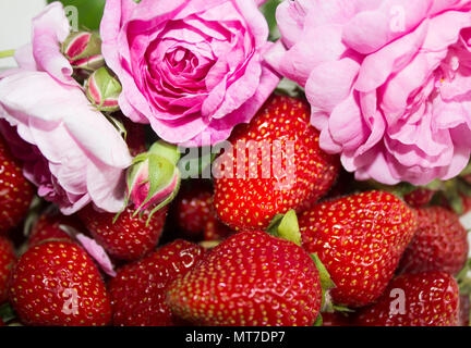 Picture of fresh ripe perfect strawberry. Macro