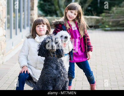 Two caucasian upper class Britsh girls (children) playing and posing with large pet standard poodles in natural coat in a rural country garden - Stock Photo