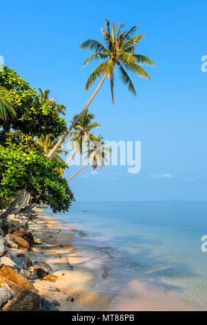 Morning on the island of Koh Samui - Stock Photo