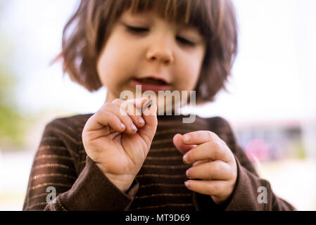 A toddler girl holding a bug in her hands. - Stock Photo
