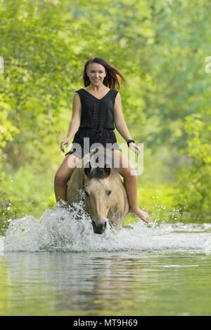 German Riding Pony. Young woman on back of a dun horse in a stream. Germany - Stock Photo