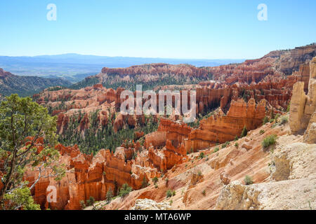 Hoodoos of Bryce Canyon in Bryce Canyon National Park, UT - Stock Photo