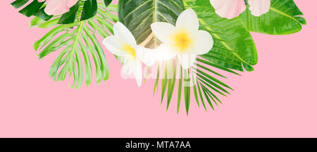 Tropical green leaves and flowers card, banner with copy space on pink summer background - Stock Photo