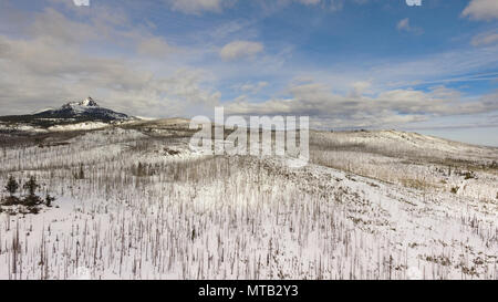 Burned forest below a mountain called Three Fingered Jack in Oregon territory - Stock Photo