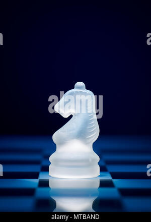 Chess game pieces. The knight on the chessboard. - Stock Photo