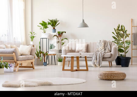 Pouf next to rug in bright living room interior with plants and beige couch. Real photo - Stock Photo