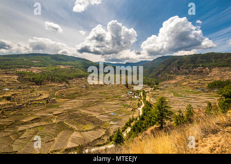 Terraced cultivation, landscape with rice fields, cloudy atmosphere, Paro district, Himalayan region, Kingdom of Bhutan - Stock Photo