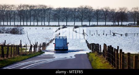 Road to Bislicher Insel at high tide on the Lower Rhine, North Rhine-Westphalia, Germany - Stock Photo