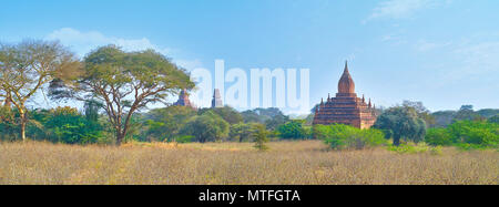 Panorama of Bagan archaeological site with ancient temples on background, Myanmar - Stock Photo