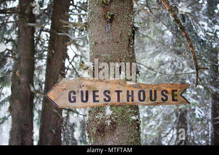 Wooden arrow sign on a tree in a forest - Stock Photo