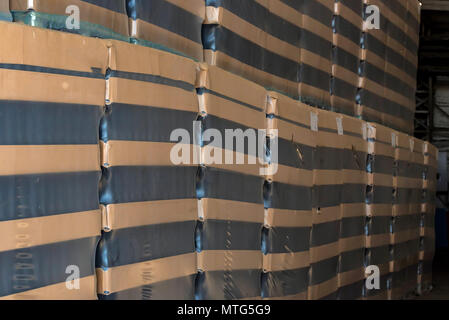 Many wine bottles packed for wholesale at winery - Stock Photo