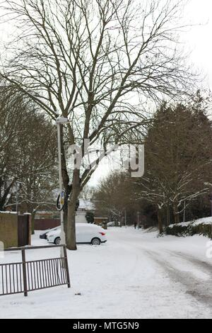 Street scene at Basildon, Essex, following heavy snowfall.  Tree lined street and parked car covered in snow. - Stock Photo